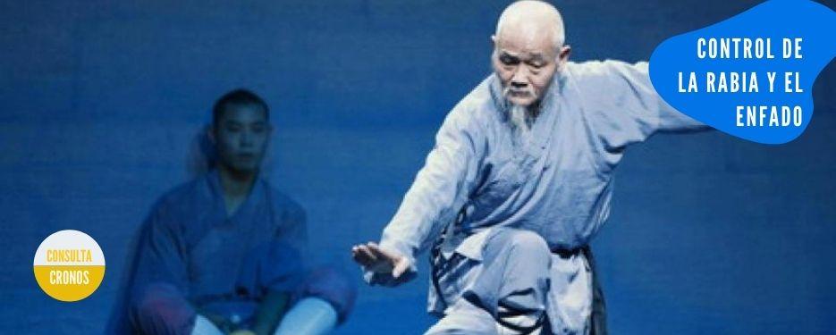 maestro artes marciales