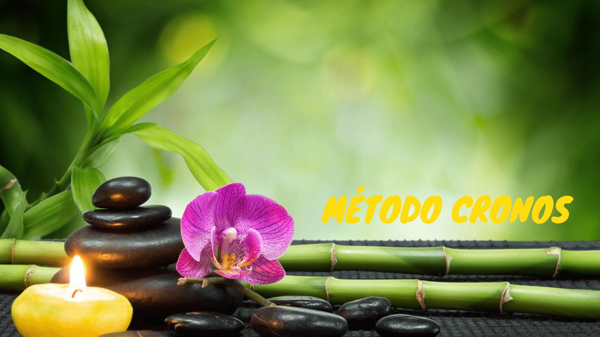 Bambú, vela y flor de loto