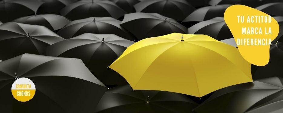 paraguas amarillo sobre fondo paraguas negros